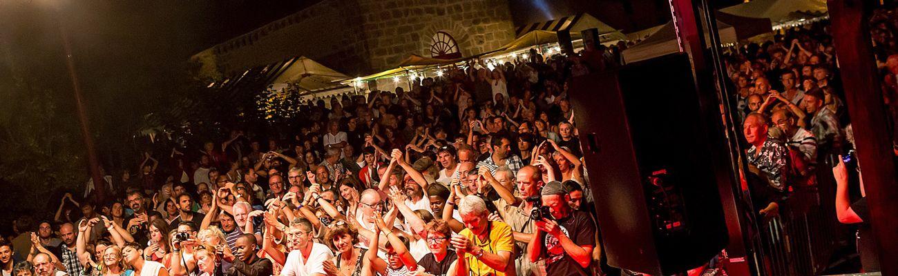 public du Buis Blues Festival